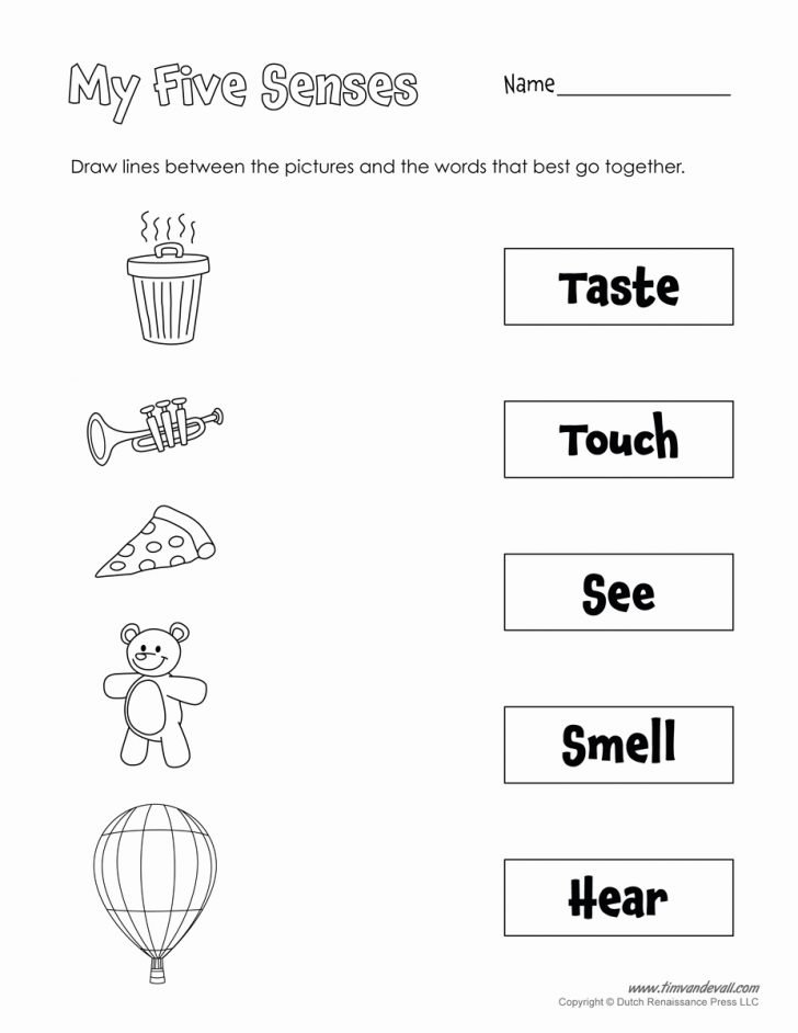 Free Printable Worksheets Kindergarten Five Senses