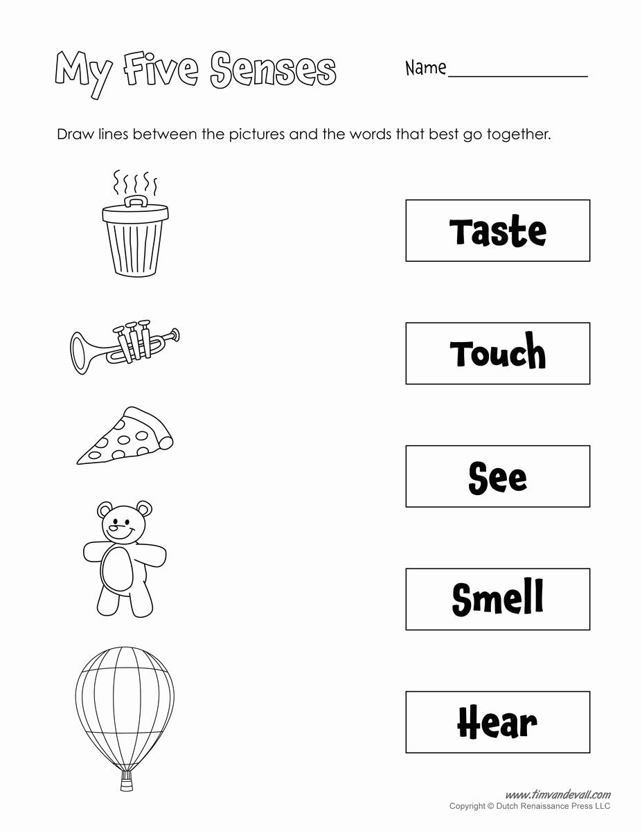 20 Free Printable 5 Senses Worksheets For Kindergarten - Free Printable Worksheets Kindergarten Five Senses