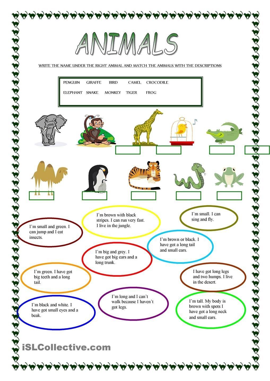 Animals | Free Esl Worksheets | Teachers Resources | Learn English - Free Printable Esl Resources
