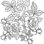 Coloring Book World ~ Freeable Coloring Pages Roses Flowers Page For – Free Printable Roses