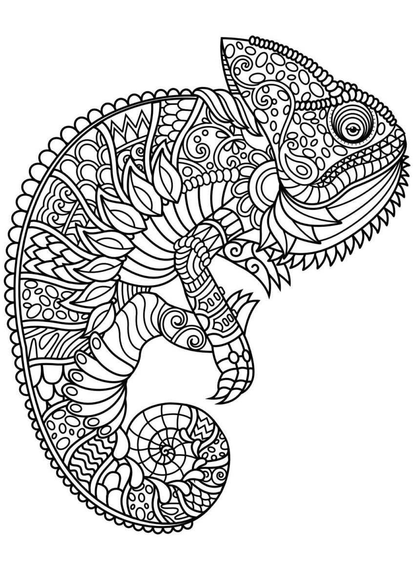 Coloring Pages Ideas: Animal Colorings For Adults Pdf Animals - Free Printable Realistic Animal Coloring Pages