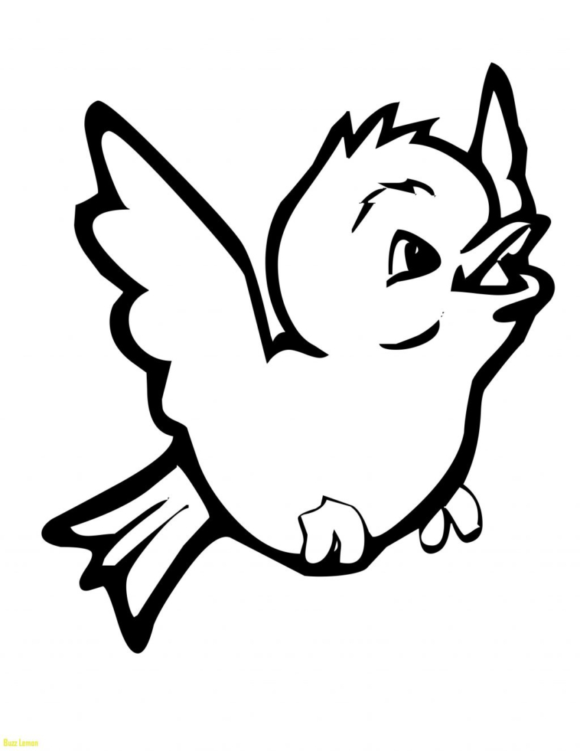 Coloring Pages Ideas: Coloring Pages Ideas Stunning Free For Kids - Free Printable Images Of Birds