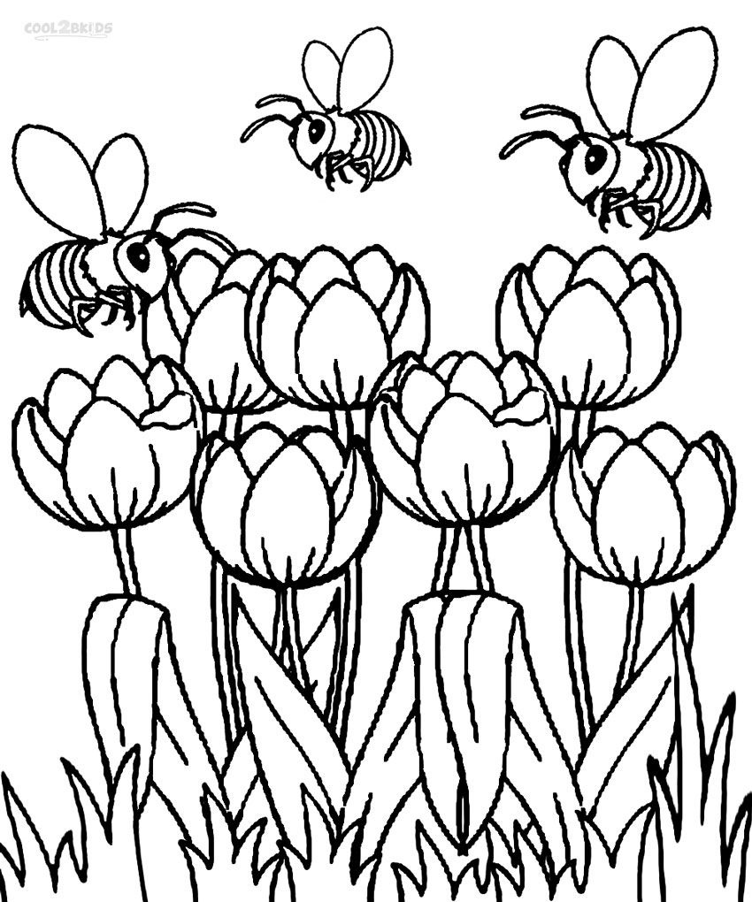 Coloring+Pages+Tulips | Printable Tulip Coloring Pages | Kids - Free Printable Tulip Coloring Pages