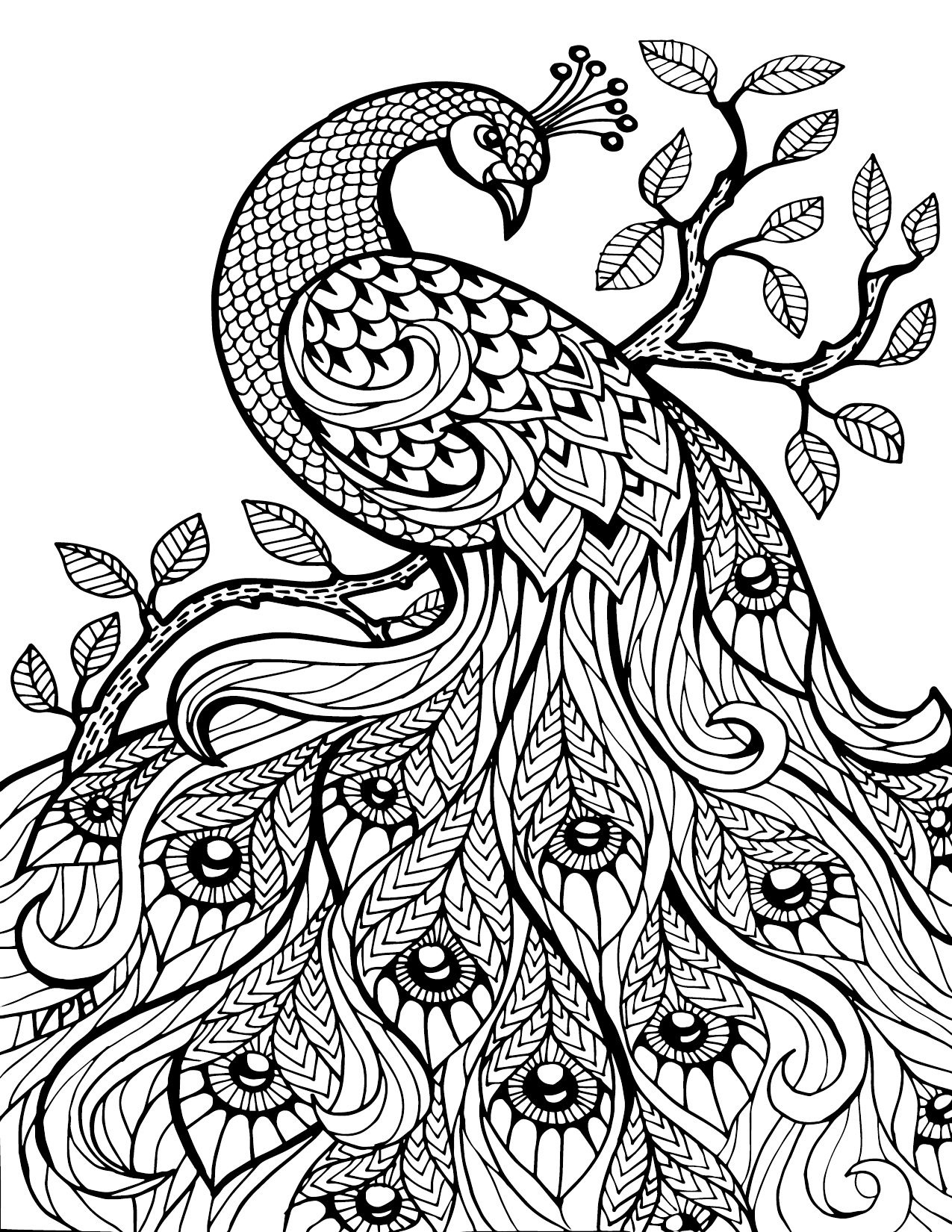 Free Printable Coloring Pages For Adults Only Image 36 Art - Free Printable Coloring Pages