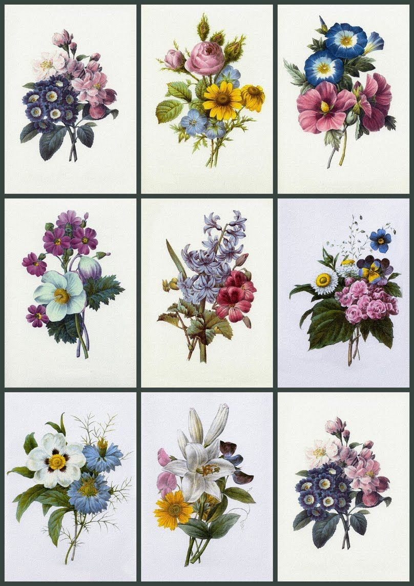 Free Printable Decoupage Papers    Sizes, Medallions, Card Fronts - Free Printable Decoupage Flowers
