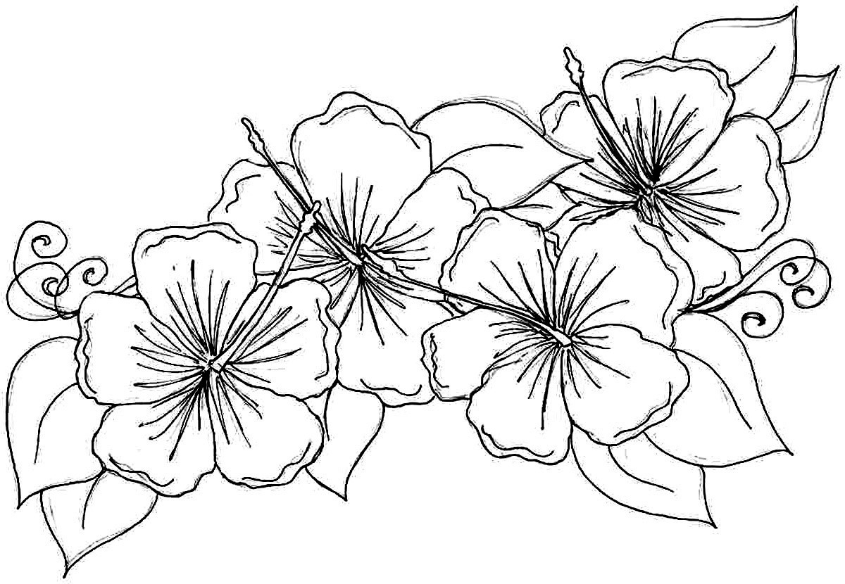 Free Printable Flowers To Color | Presidencycollegekolkata - Free Printable Flower Coloring Pages