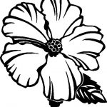 Free Printable Hibiscus Coloring Pages For Kids | Flower Coloring   Free Printable Hibiscus Coloring Pages