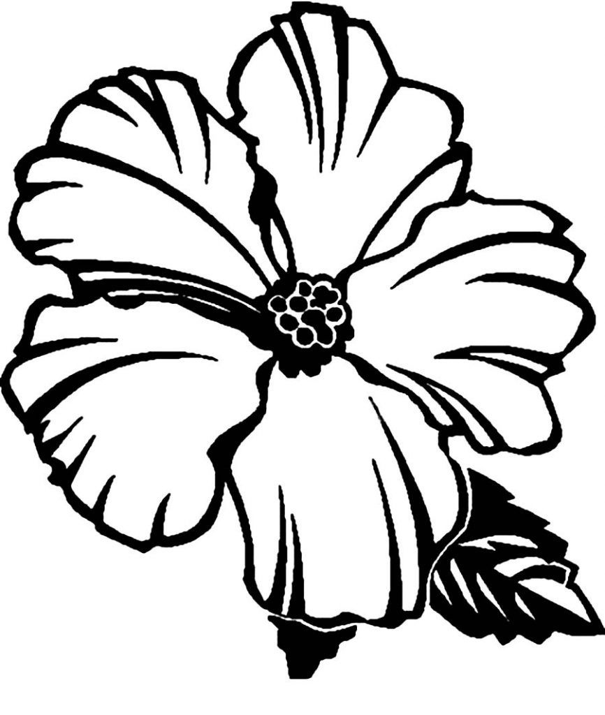Free Printable Hibiscus Coloring Pages For Kids | Flower Coloring - Free Printable Hibiscus Coloring Pages
