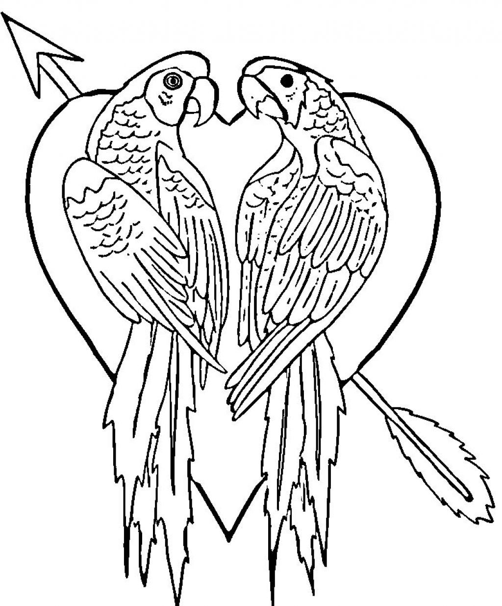 Free Printable Parrot Coloring Pages For Kids - Free Printable Parrot Coloring Pages