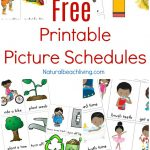 Free Printable Picture Schedule Cards – Visual Schedule Printables – To Have And To Hold Your Hair Back Free Printable