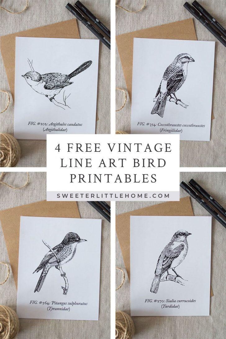 Free Printable Vintage Art