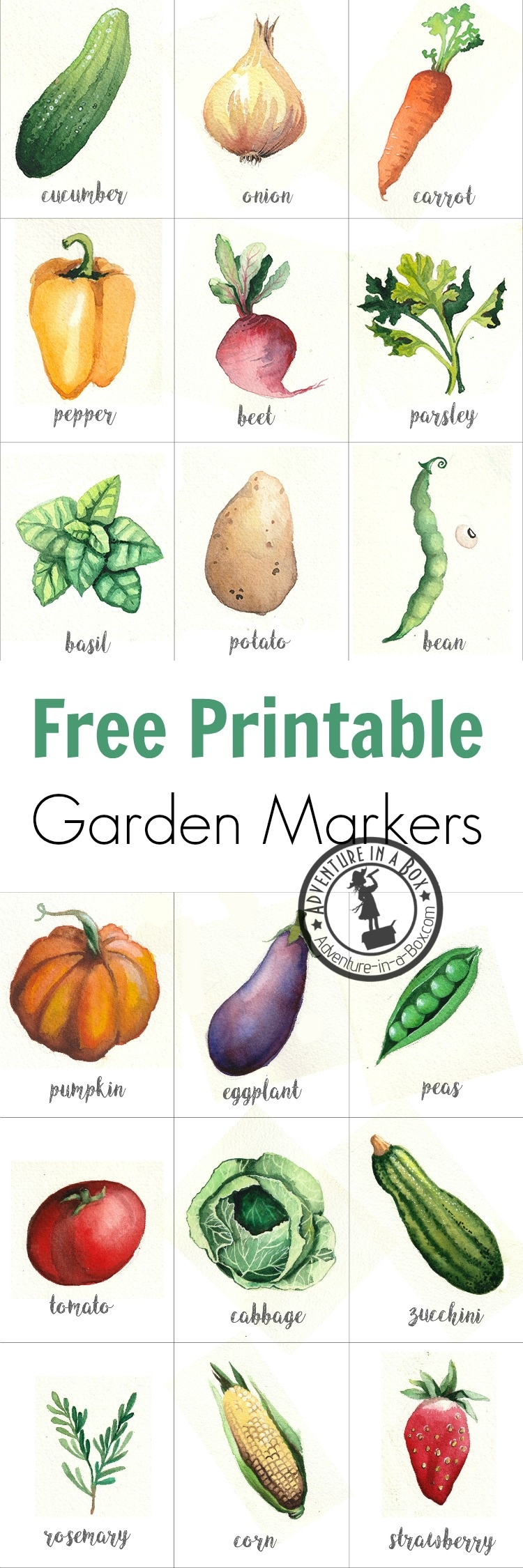 Free Printable Watercolour Garden Markers | Adventure In A Box - Free Printable Plant Labels
