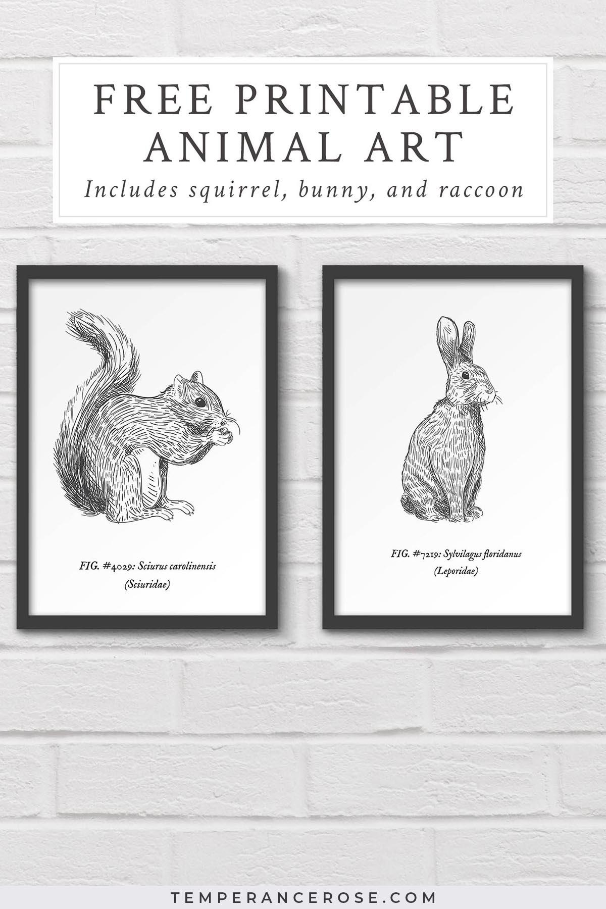 Free Printable Woodland Animal Wall Art - Free Printable Vintage Art