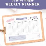 Free Stylish + Feminine Printable Meeting Agenda Template - Free Printable School Agenda Templates