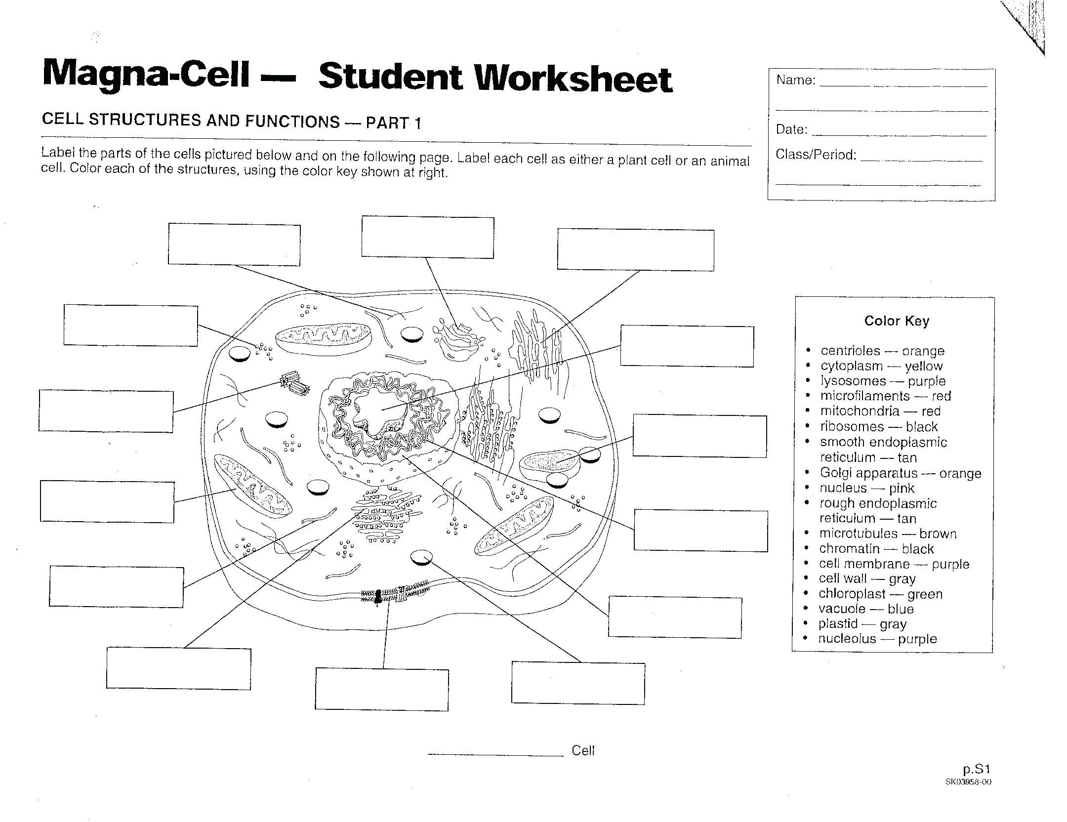 July 30, 2018 – Androidstarter.club - Free Printable Cell Worksheets