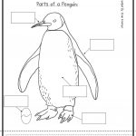 Penguin Worksheets For Preschool | Here Are Some Penguin Activities – Free Printable Penguin Books