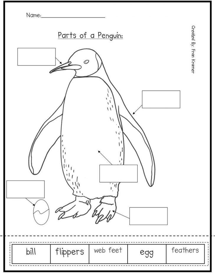 Free Printable Penguin Books