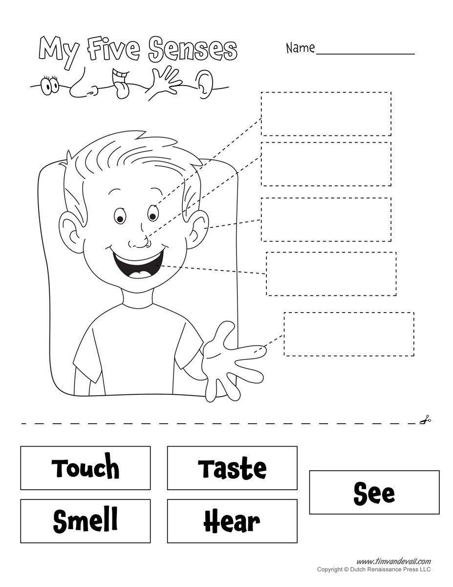 Pindebbie Simms On Preschool Crafts | Senses Preschool, 5 Senses - Free Printable Worksheets Kindergarten Five Senses