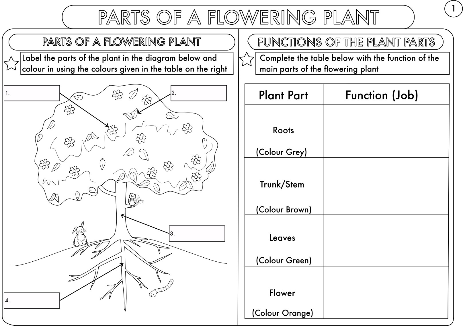 Year 3 Science: Parts Of A Plant Worksheetbeckystoke | Teaching - Free Printable Science Worksheets For Grade 2