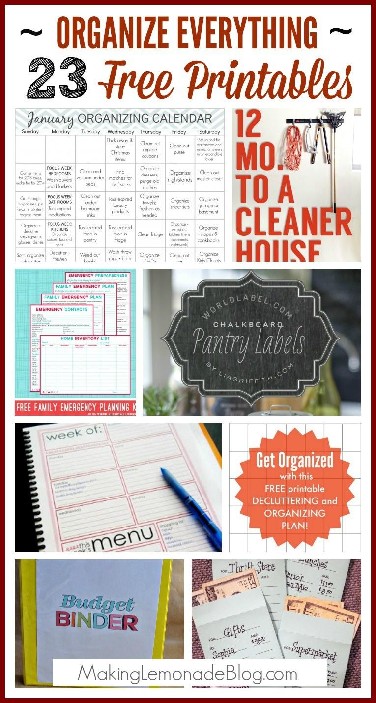 23 Free Printables To Organize Everything | Making Lemonade - Free Printable Home Organization Worksheets