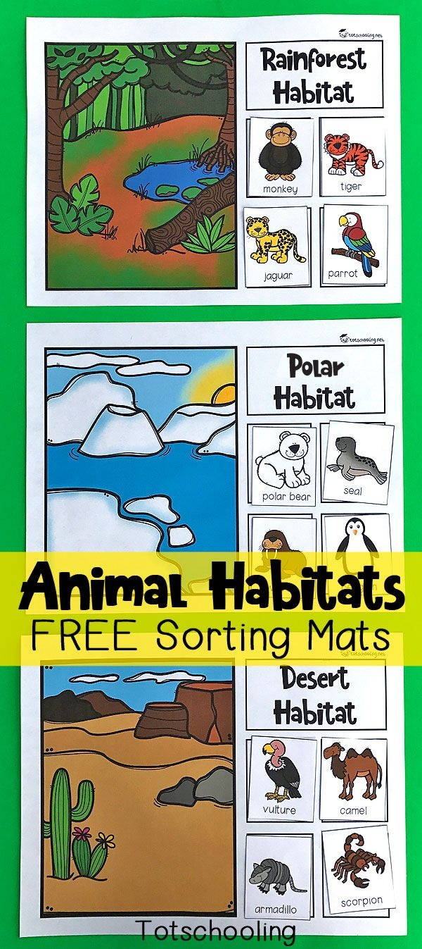 Animal Habitats Sorting Mats | Free Printables | Preschool Science - Free Printable Worksheets Animal Habitats