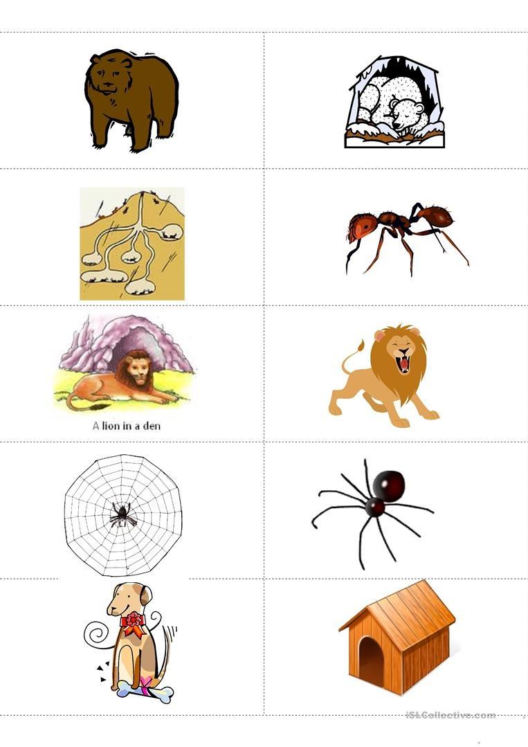Animals And Their Habitat Memory Flashcards Worksheet - Free Esl - Free Printable Worksheets Animal Habitats