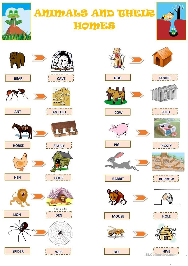 Animals And Their Homes Worksheet - Free Esl Printable Worksheets - Free Printable Worksheets Animal Habitats