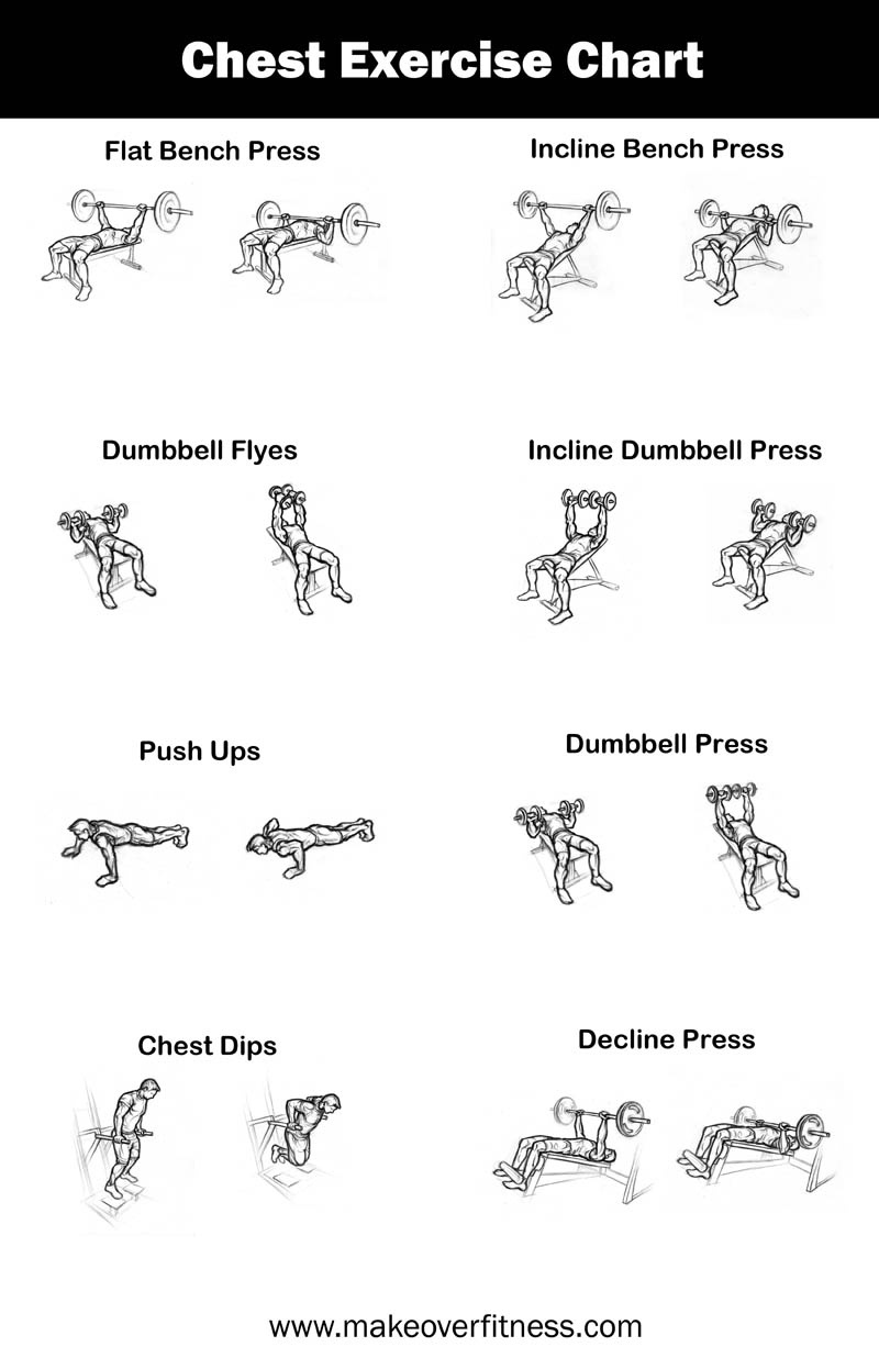 Chest Exercise Chart - Free Printable Gym Workout Routines