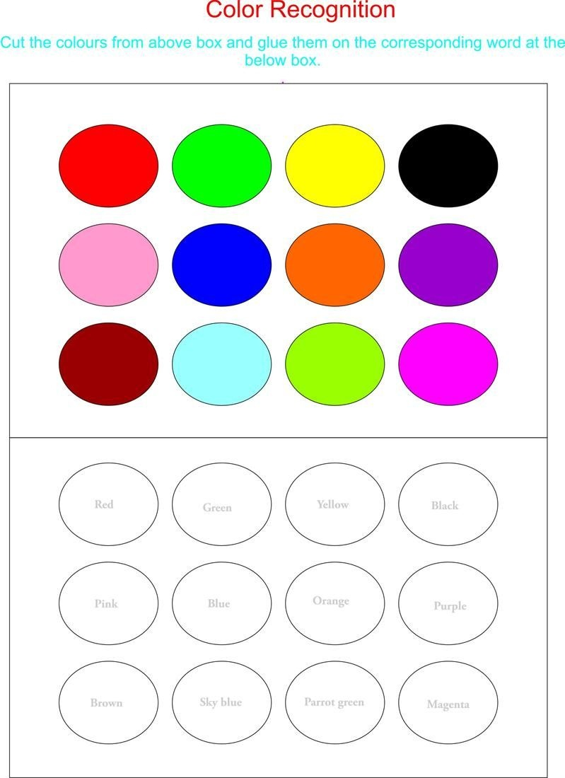 Color Recognition Worksheets For Preschoolers   Working With Colors - Color Recognition Worksheets Free Printable