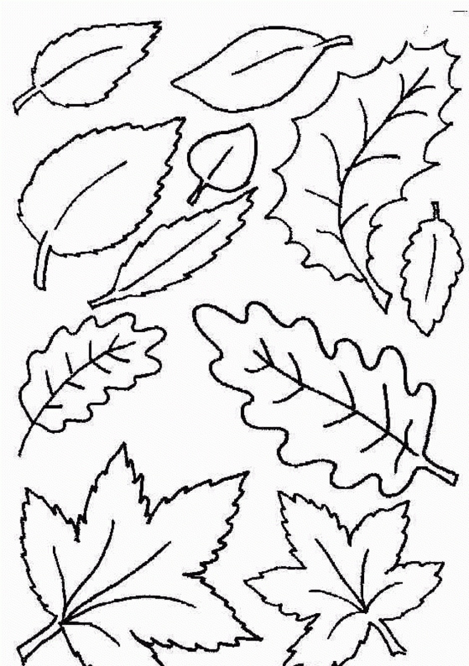 Coloring Ideas : Free Printable Leaf Coloring Pages Fall Leaves And - Free Printable Leaf Coloring Pages