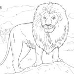 Coloring:coloring Pages Hard Animals Printable Adult Coloring Pages   Free Printable Wild Animal Coloring Pages