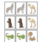Desert Animal Printables   Teaching Mama   Free Printable Desert Animals