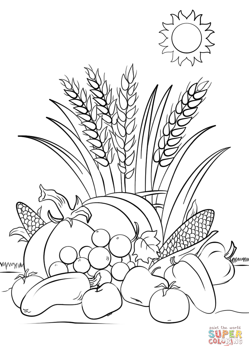 Fall Harvest Coloring Page   Free Printable Coloring Pages - Free Printable Fall Harvest Coloring Pages