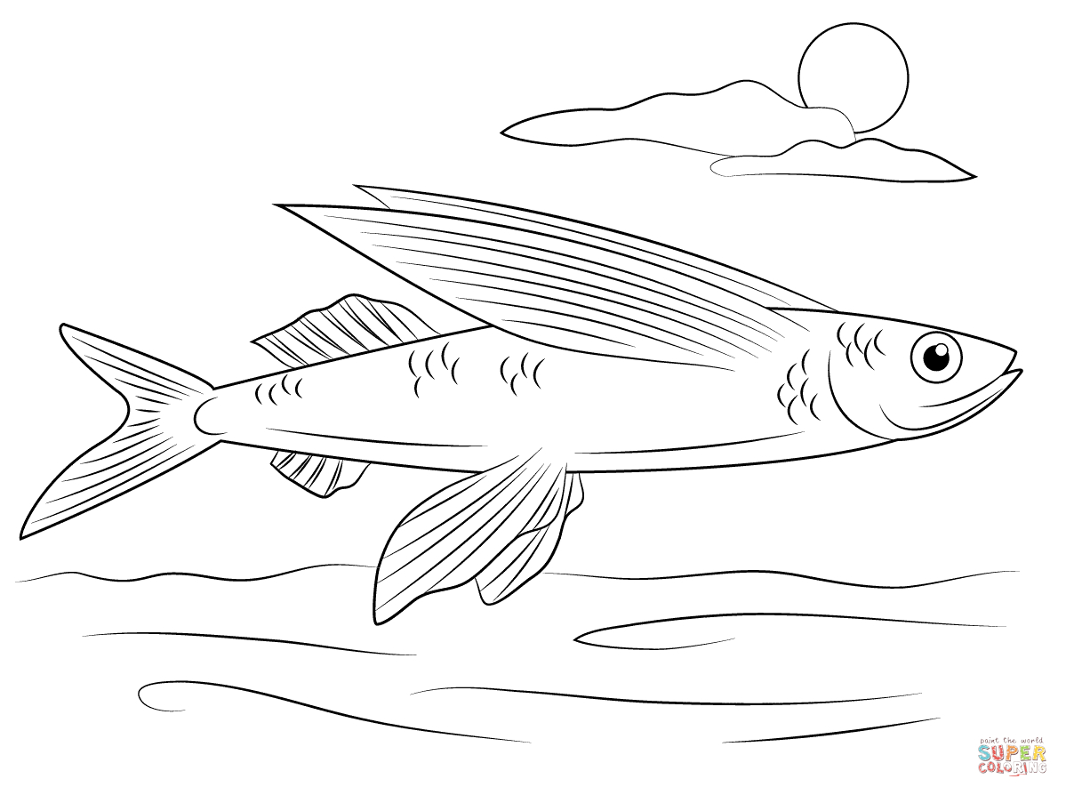 Flying Fish Coloring Page | Free Printable Coloring Pages - Free Printable Fish Coloring Pages
