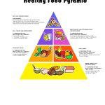 Food Guide Pyramid   Free Printable Food Pyramid