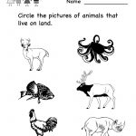 Free Printable Animal Worksheet For Kids | Crafts And Worksheets For   Free Printable Worksheets For Kids Science
