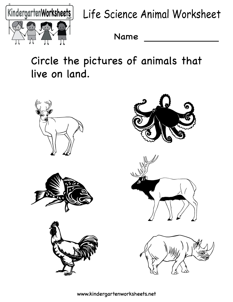 Free Printable Animal Worksheet For Kids | Crafts And Worksheets For - Free Printable Worksheets For Kids Science