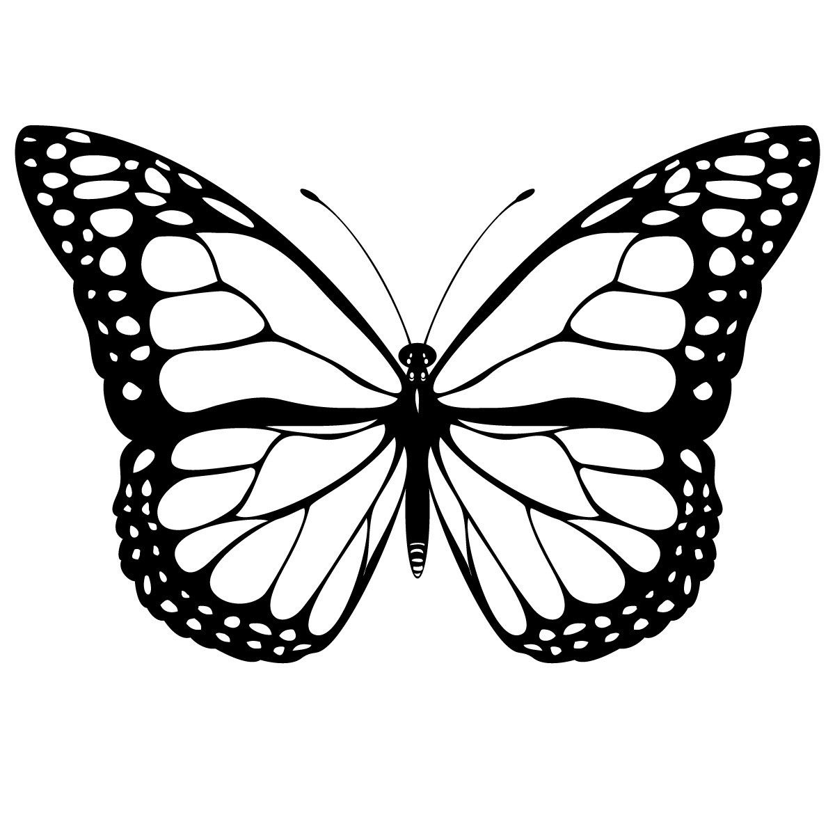 Free Printable Butterfly Coloring Pages For Kids   Butterfly - Free Printable Butterfly Coloring Pages