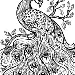 Free Printable Coloring Pages For Adults Only Image 36 Art   Free Printable Coloring Pages For Adults