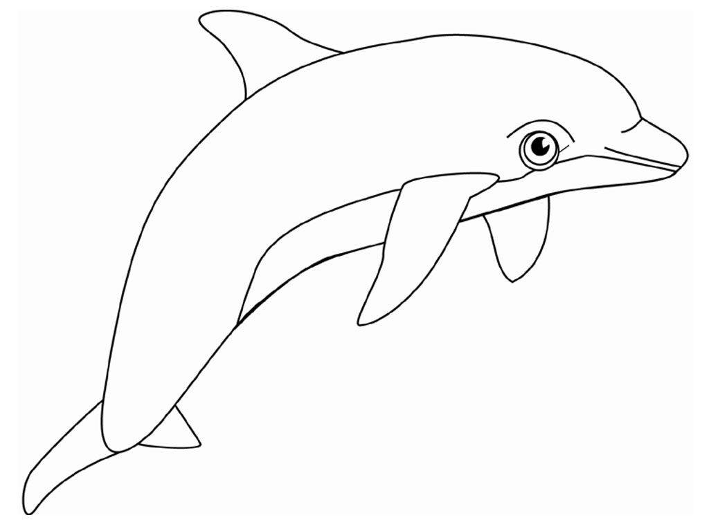 Free Printable Dolphin Coloring Pages For Kids   Dolphin   Dolphin - Dolphin Coloring Sheets Free Printable