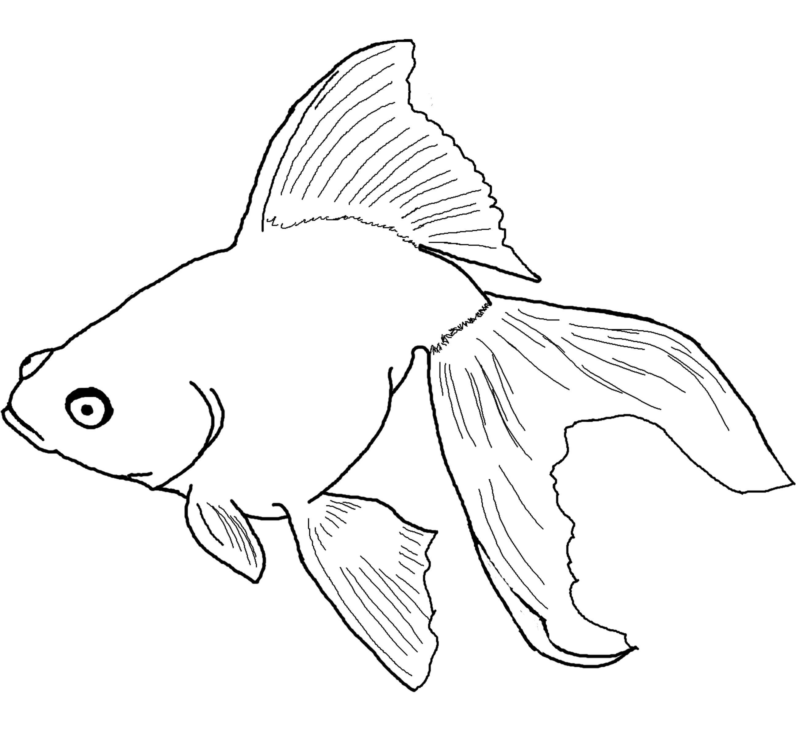 Free Printable Fish Coloring Pages For Kids - Free Printable Fish Coloring Pages