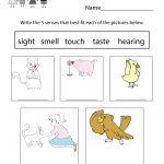 Free Printable Five Senses Worksheet For Kids   Free Printable Science Worksheets