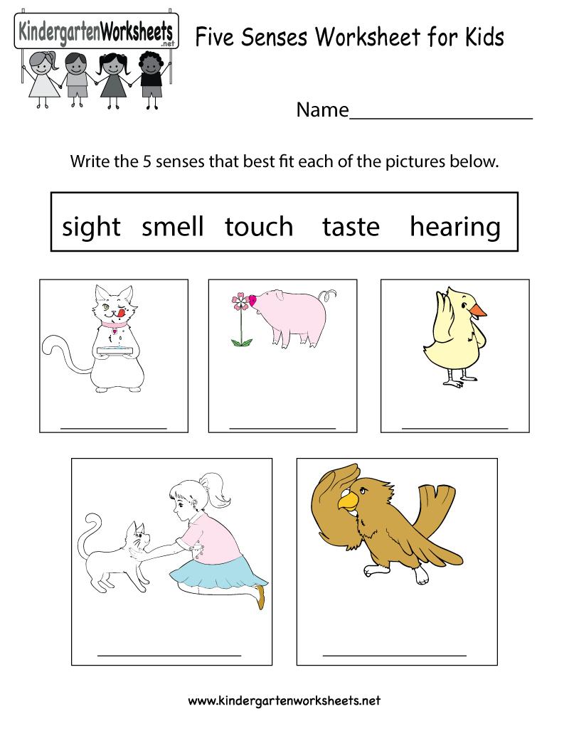 Free Printable Five Senses Worksheet For Kids - Free Printable Science Worksheets