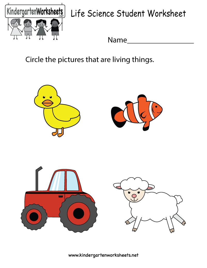 Free Printable Life Science Student Worksheet For Kindergarten - Free Printable Worksheets For Kids Science