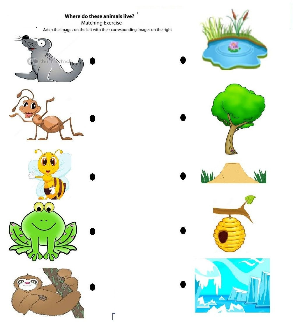 Free Printable Matching Animals To Their Home Worksheet (7) | Pre - Free Printable Worksheets Animal Habitats