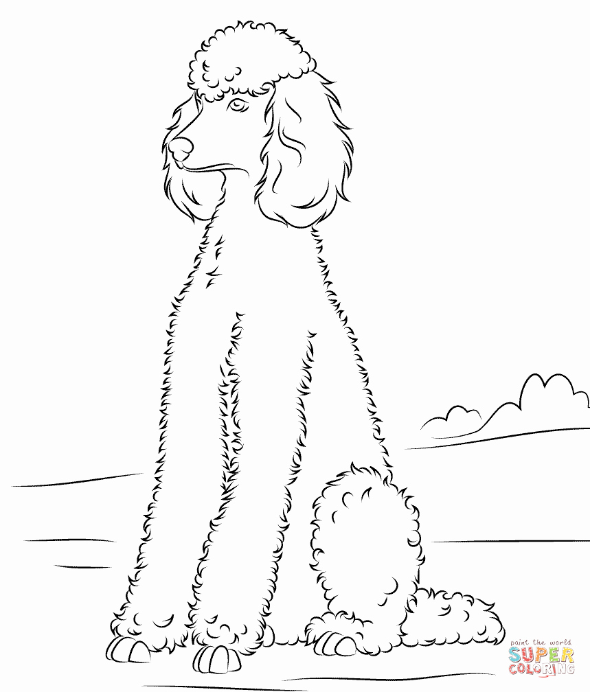 Free Printable Poodle Template – Rtrs.online - Free Printable Poodle Template