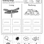Freebie! No Prep Kindergarten Science Doodle Printables | T E A C H   Free Printable Worksheets For Kids Science