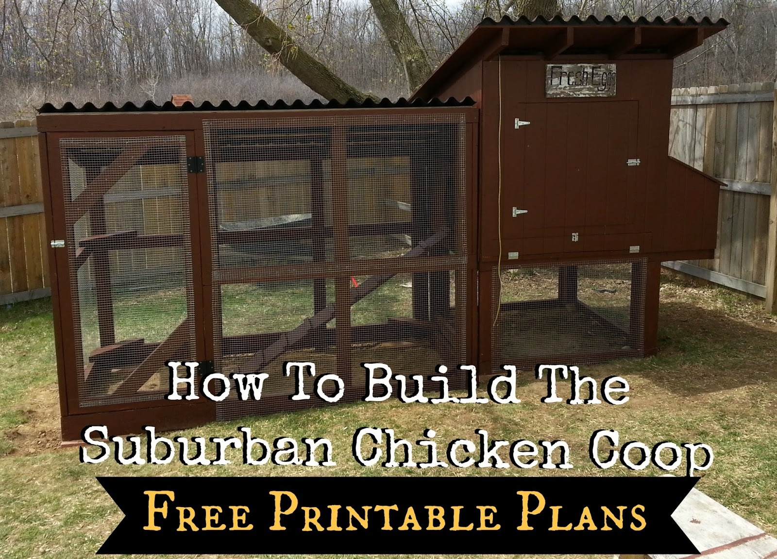 How To Build The Simple Suburban Chicken Coop - Free Printable Plans - Free Printable Chicken Coop Plans