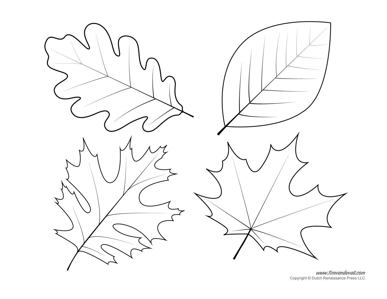 Leaf Templates - Kaza.psstech.co - Free Printable Oak Leaf Patterns