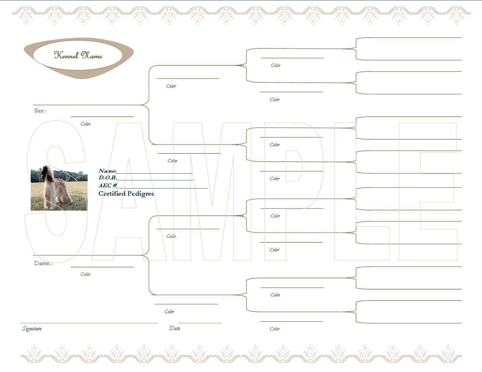Pedigree Certificate Template Free. Family Tree Template 3 - Free Printable Dog Pedigree Generator